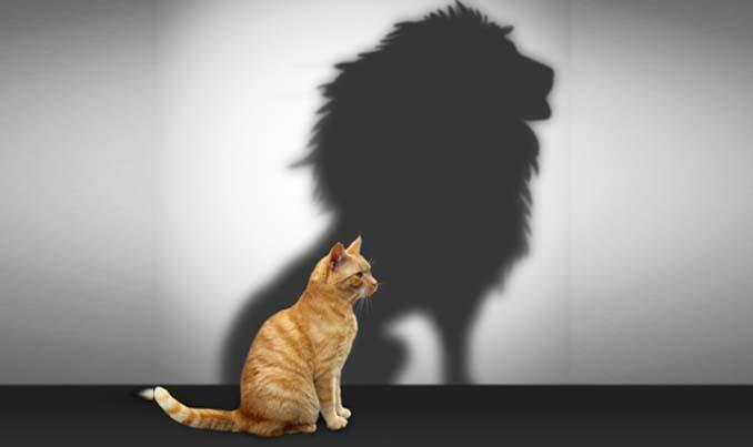 اعتماد به نفس چیست؟